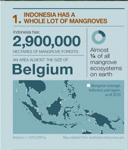 From CIFOR (Centre for International Forestry research)